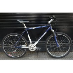 Mountain Bike Raleigh Rodado 26 Usada