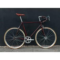 Bicicleta Modelo Puma