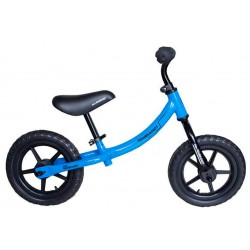 Bicicleta estabilizadora rembrandt