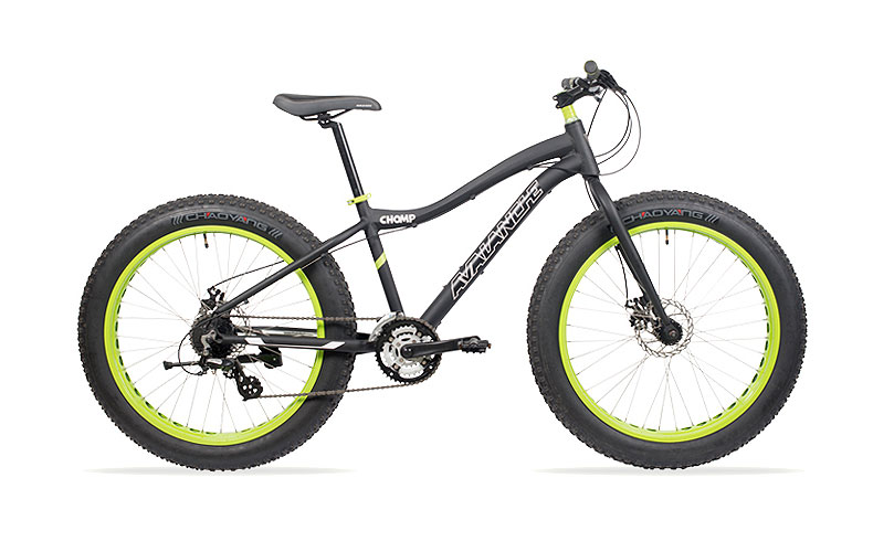 bicicleta fat bike.jpg
