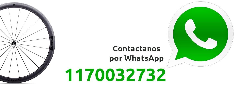 1170032732