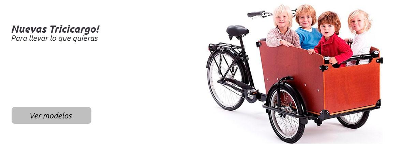 Bicicletas Tricicargo y de Reparto